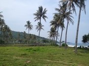 LOMBOK   FREEHOLD   LAND   BEACH   FRONT  FOR  SALE ( LL-109 )