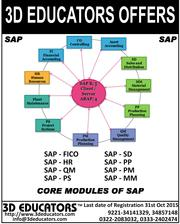 3D Educators Offers SAP